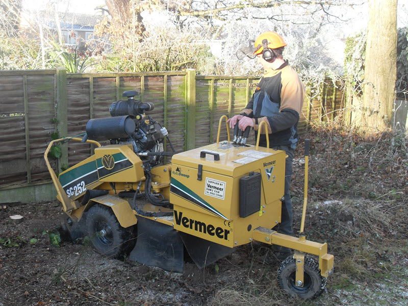 Stump Grinding, Stump Removal